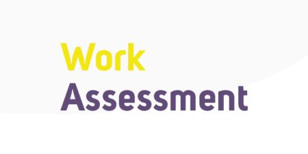 User licenses for work assessments